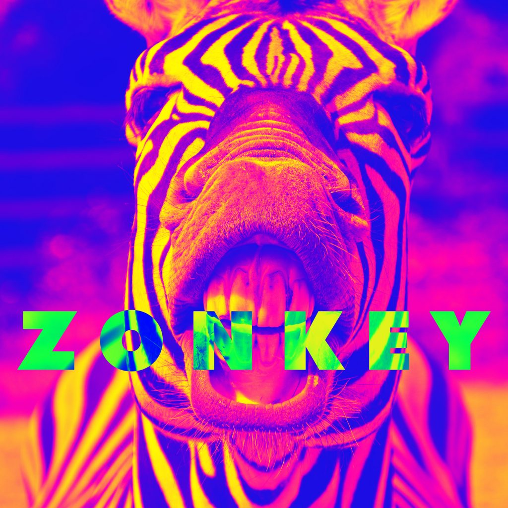 zonkey-cant-rock-my-dream-face
