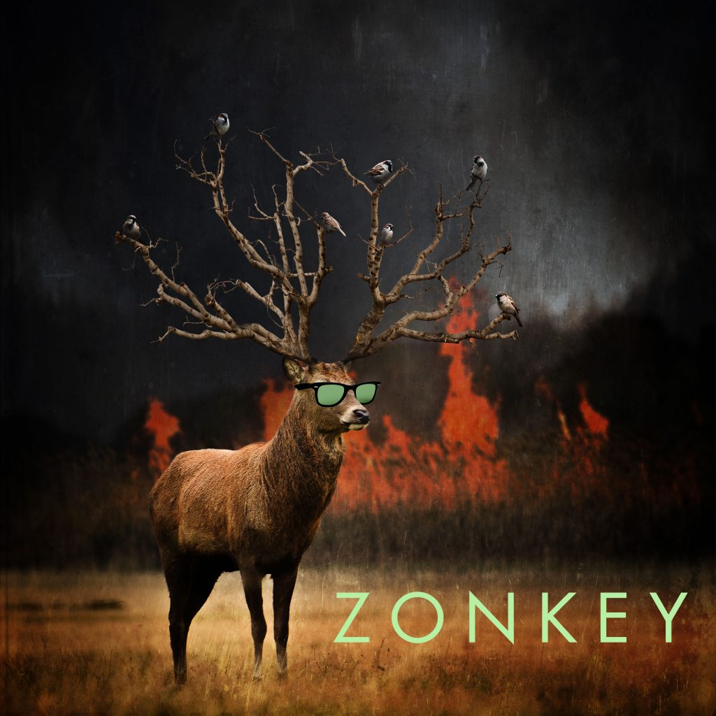 zonkey-sweet-sunglasses