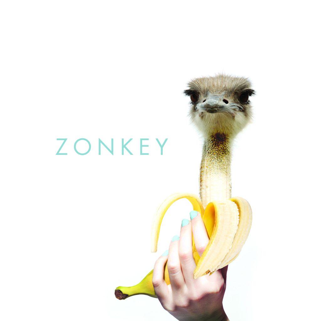 zonkey-strangletage-cover